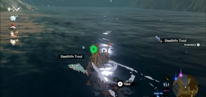 where to find stealthfin trout zelda botw
