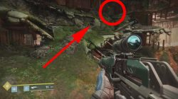 Destiny 2 The Sludge Hidden Region Golden Chests