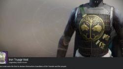Iron Truage Vest Heavy Hunter Chest Armor Iron Banner Destiny 2
