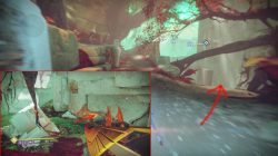 cayde treasure chest nessus tangle