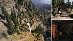 Vinyl Crate Osprey Cabin Far Cry 5