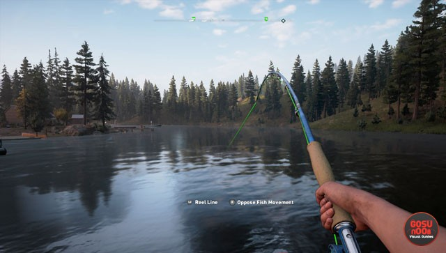 far cry 5 fishing