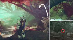 Dead Ghost Nessus Destiny 2 Forsaken Confession of Hope Part Two