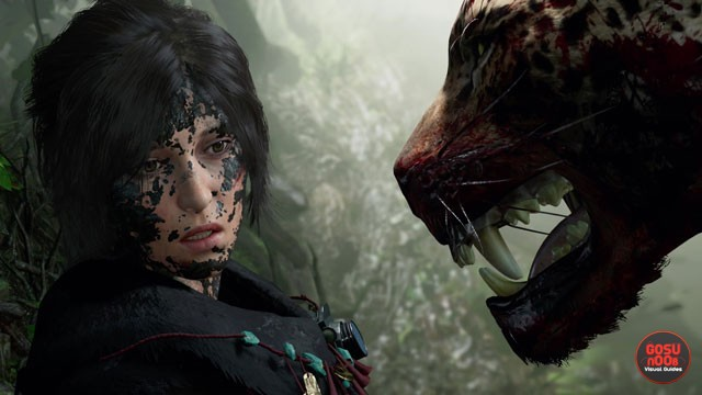 Stuttering and Audio Bug Fixes - Shadow of the Tomb Raider