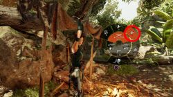 how to craft poison lure arrows shadow of the tomb raider