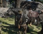 Red Dead Redemption 2 Horse is Dirty - How to Clean Horse