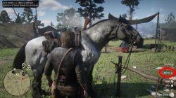 rdr2 horse brush