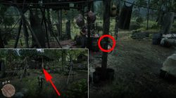 rdr 2 where to find pig mask location