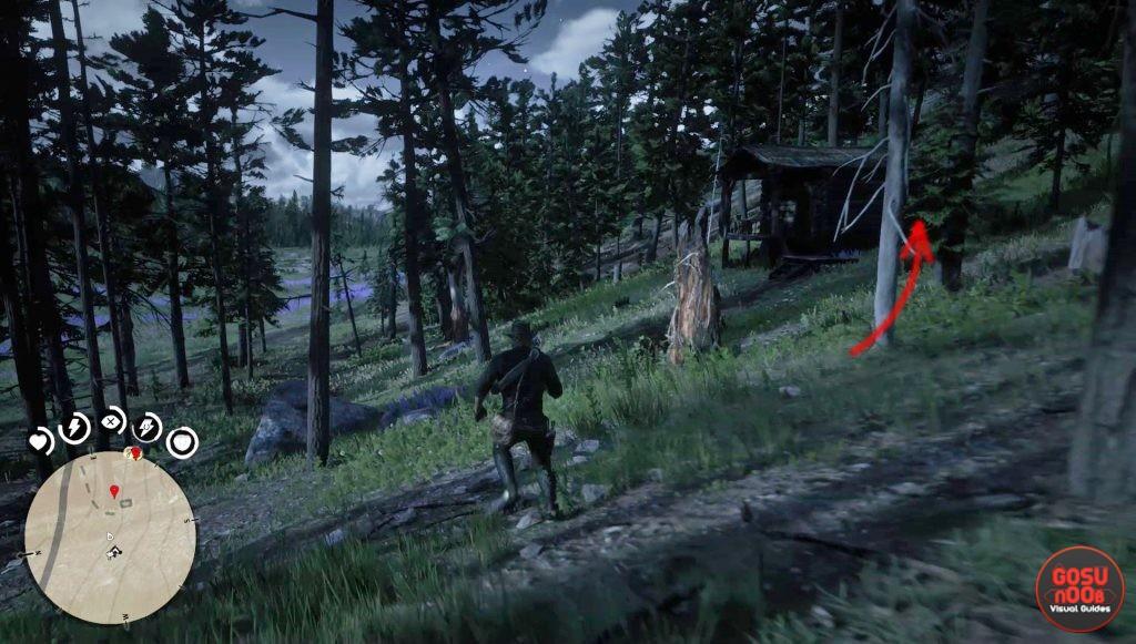 Где найти курительную трубку для Датча Ван дер лина в Red Dead Redemption 2