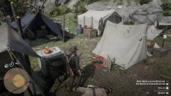 rdr2 how to steal hat