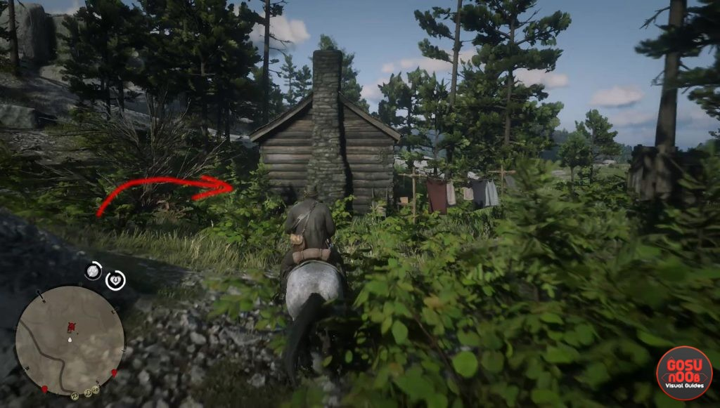 Где найти карманное зеркало для Молли в Red Dead Redemption 2