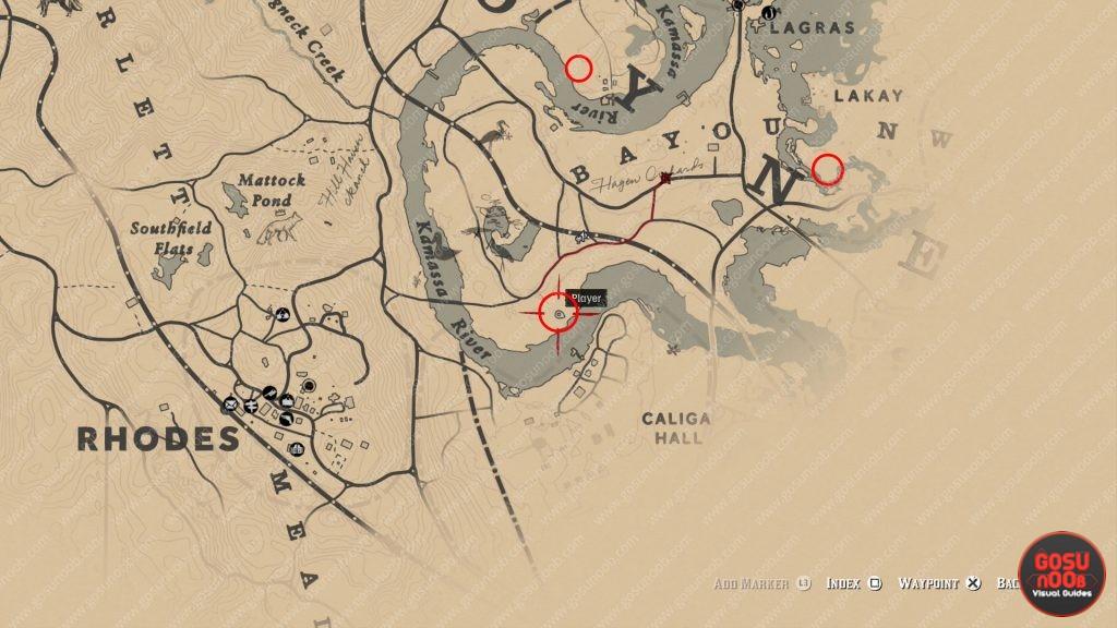 Где найти растение Олеандр в Red Dead Redemption 2, крафт отравленной стрелы