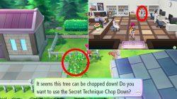 aerodactyl pokemon lets go how to get