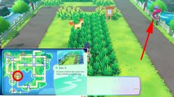 blast off outfit set pokemon lets go where to find