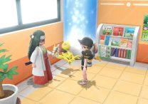 fortune teller nature lady pokemon lets go