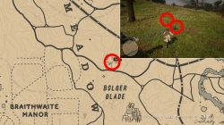 where to find yarrow locations rdr2 bolger glade