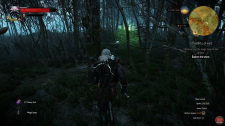 A Towerful Of Mice   Witcher 3