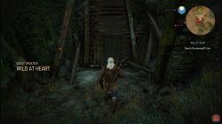 Witchery Werewolf Quests