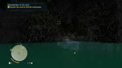 Far Cry 3 Mushrooms in the Deep