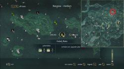 AC 4 Elite Round Shot Strength Plan Location