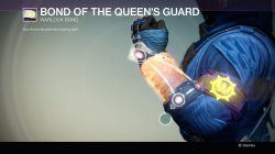 Bond of the Queen's Guard, Warlock