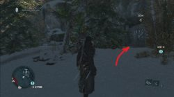Assassin's Creed Rogue Coeur-de-I'hiver Cave Painting