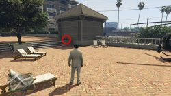 GTA V San Andreas Peyote Plant Location
