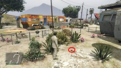 GTA 5 Wind Farm Peyote Plant Location