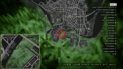 GTA V Lost Santos International Airport Peyote Plant Location