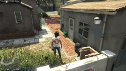 chop peyote map location gta online
