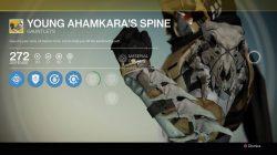 Young ahamkaras spine