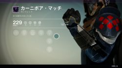 Hunter crucible armor 2