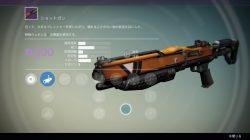 Leaked vanguard weapon 11