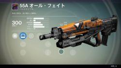 Leaked vanguard weapon 8