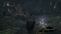 Bloodborne How to enter Forbidden Woods