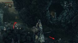 Bloodborne Where to Find Amygdala Boss