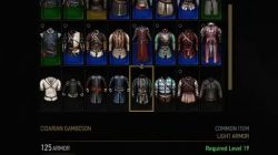 witcher 3 cidarian gambeson