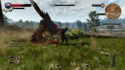 witcher 3 wild hunt in-game screenshot 5