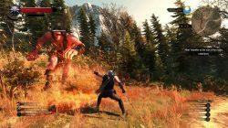 witcher 3 wild hunt in-game screenshot 2