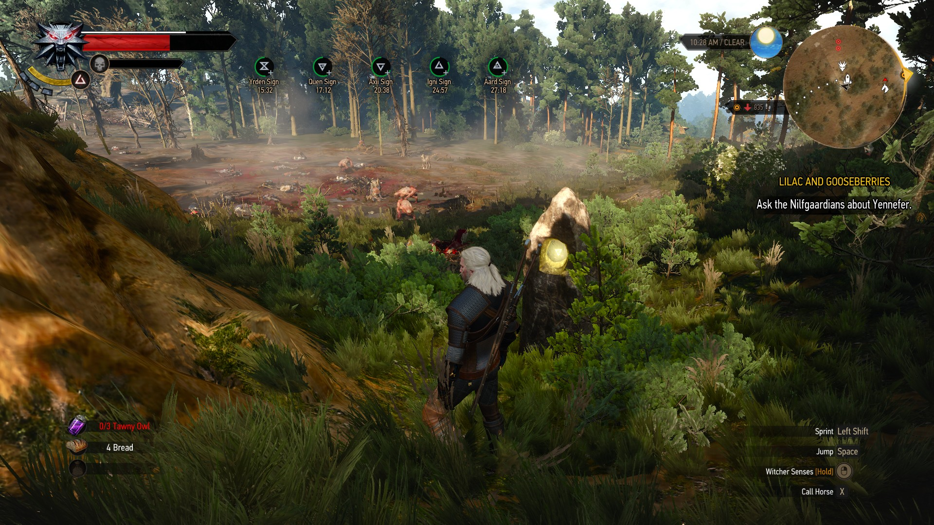 White Orchard Place Of Power   The Witcher 3