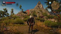 The Witcher 3 No Man's Land Place of Power