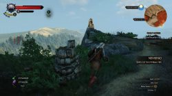 Witcher 3 Northern Novigrad Place of Power