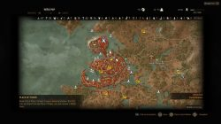 Witcher 3 Northern Novigrad Place of Power Map