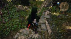 Witcher 3 Feline Silver Sword