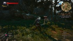 Witcher 3 Velen Place of Power