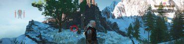 bear silver sword location