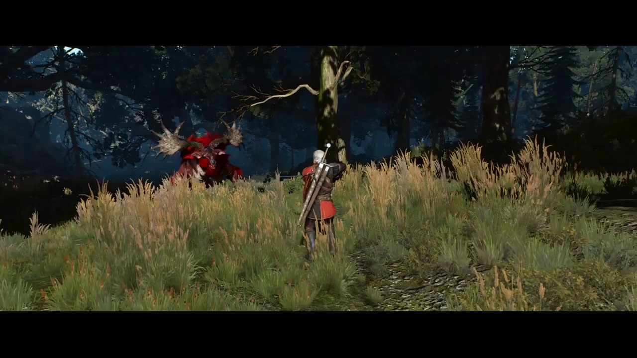 Best Skills To Invest at Start - The Witcher 3