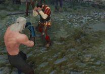 witcher 3 brawl master