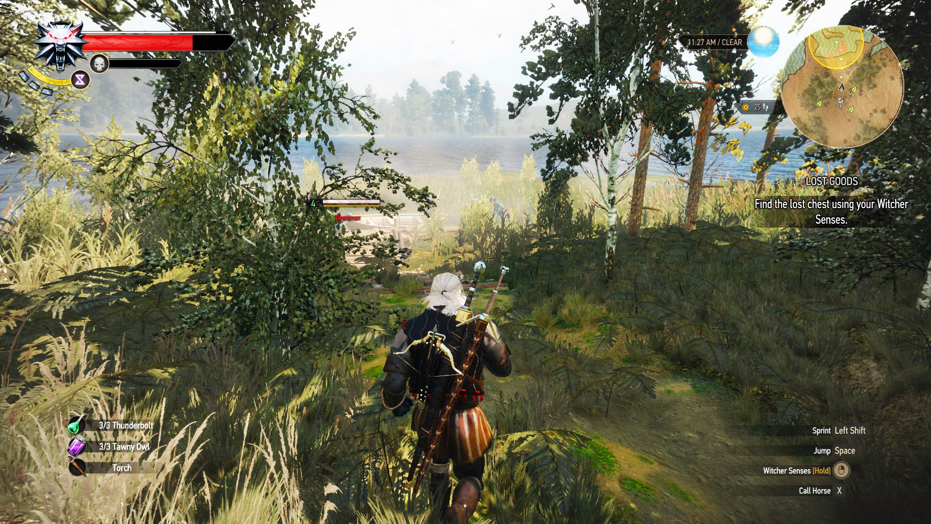 Witcher 3 Best Weapons