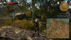 witcher 3 hidden from the world 1